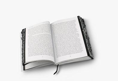 boekverbrandingenbloemlezing-22-2
